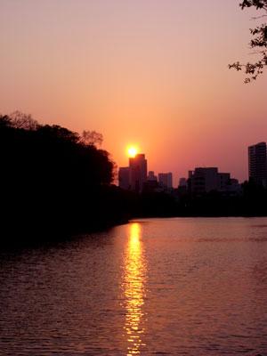 大阪城100501.jpg