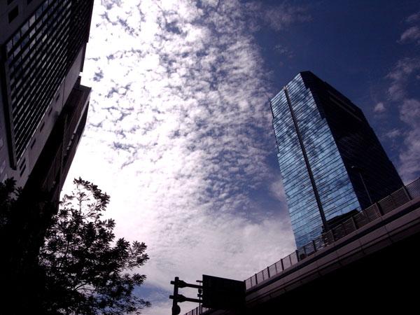 秋の雲を映す.jpg